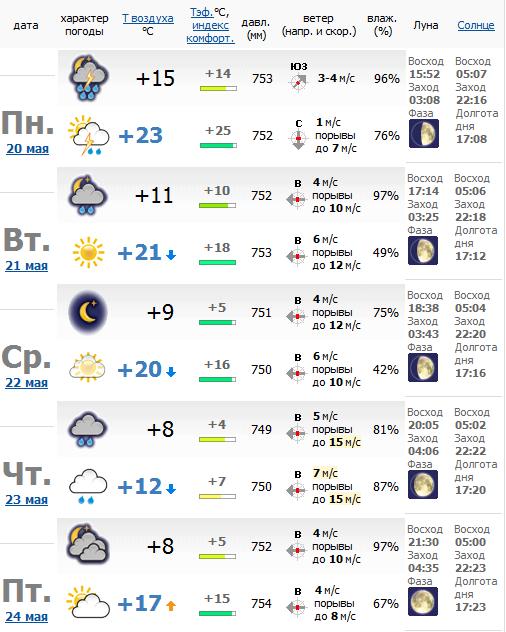 Погода в боровичах на 14 дней 13 28 погода